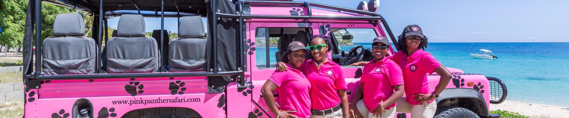 Pink Panther tour